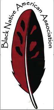 bnaa logo